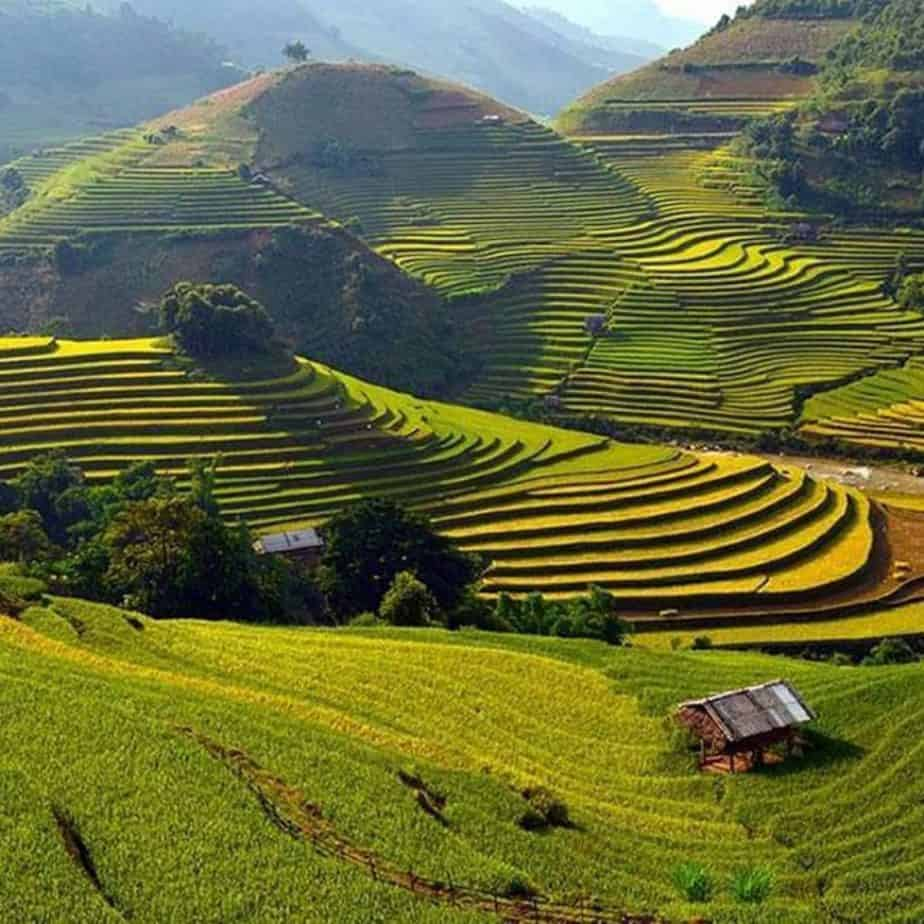 Stunning rice fields in Sapa, Easy Riders Vietnam