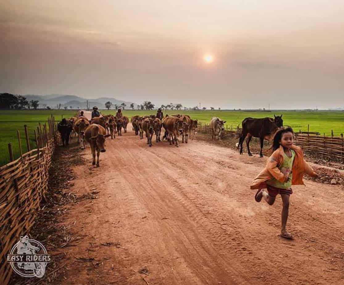 Day 5: Bao Loc - Mui Ne (170 km - 5 hours riding)