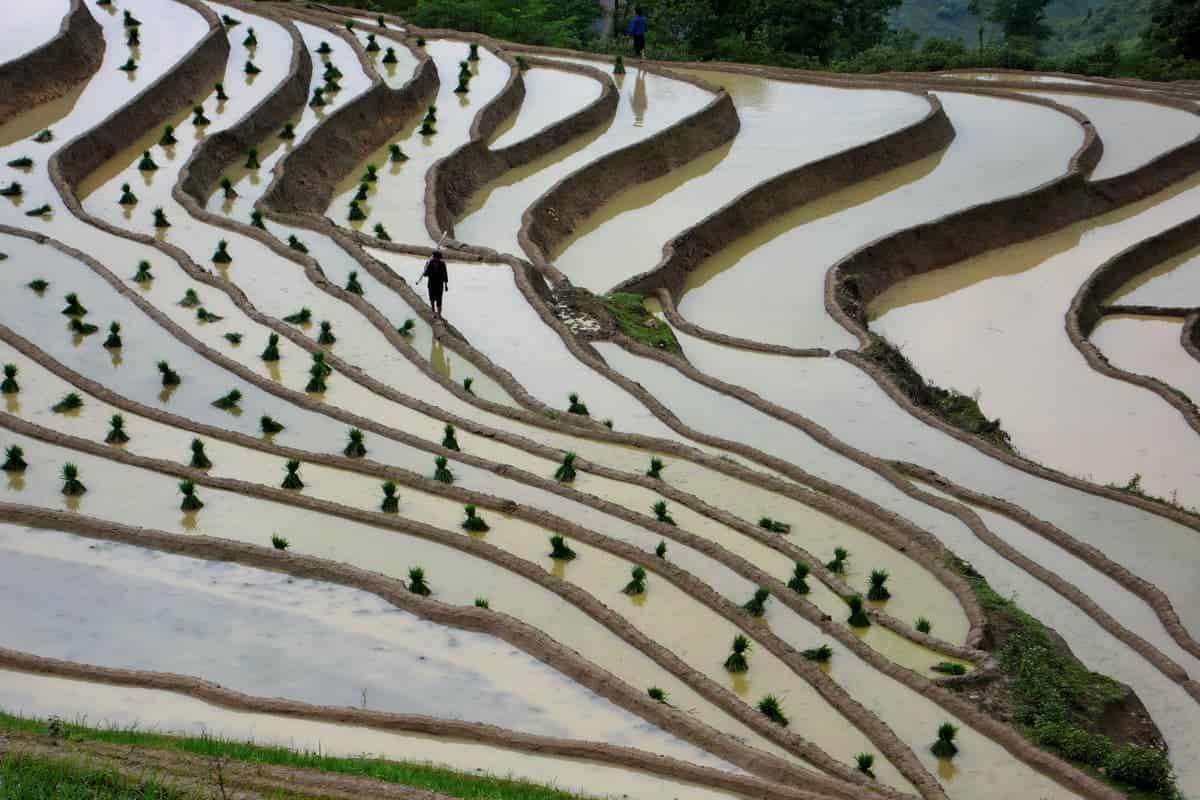 Day 6: Bac Ha – Ha Giang (190 km – 6 hours riding)