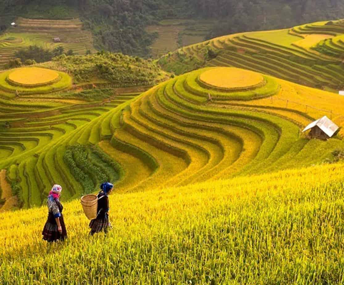 Day 3: Phu Yen – Mu Cang Chai – Than Uyen: (210km – 7 hours riding)